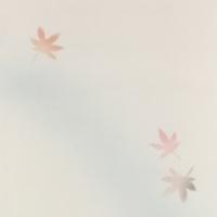半切 千草 紅葉紋様(ブルーぼかし) 10枚入