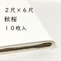 2尺×6尺 秋桜(白)10枚入