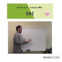 性(2018年12月kokokara講座)☆
