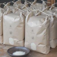 【年間購入/月1回12回発送/一括払い】自然栽培 ササニシキ  -白米-  5kg x 12