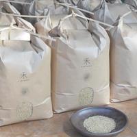 【年間購入/月1回12回発送/一括払い】自然栽培 ササニシキ  -玄米-  5kg x 12