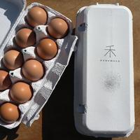 【定期便】平飼いたまご 20個(10個パック× 2 )