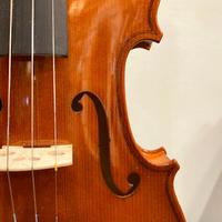 バイオリン Franz SANDNER #101 (Made in Czeco)