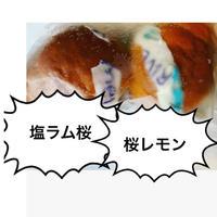 単品(桜レモン/ラムレーズン桜)クリームパン2種