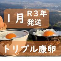 【R3年1月発送】トリプル康卵 30個(10個入り×3パック)