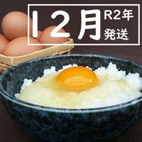 【R2年12月発送】トリプル康卵 30個(10個入り×3パック)