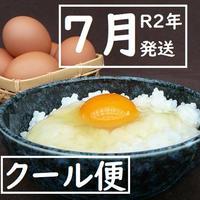 【R2年7月発送】★クール便 トリプル康卵 30個(10個入り×3パック)