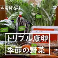 【季節の野菜おまかせセットⅡ】トリプル康卵20個、季節の野菜(無農薬無化学肥料、特別栽培) クール送料込み