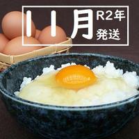 【R2年11月発送】トリプル康卵 30個(10個入り×3パック)
