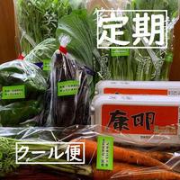 【定期・季節の野菜おまかせセット】康卵20個、季節の野菜(無農薬無化学肥料、特別栽培) クール送料込み