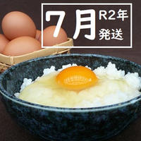 【R2年7月発送】トリプル康卵 30個(10個入り×3パック)