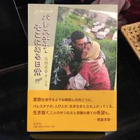 『パレスチナ・そこにある日常』高橋美香 著・写真