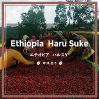 【エチオピア】ハルスケ(200g)中浅煎り