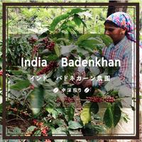 《送料¥200(メール便)》【インド】バドネカーン農園 (100g)中深煎り