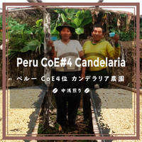 《送料¥200(メール便)》【ペルー】COE#4 カンデラリア農園 100g