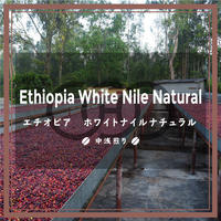 《送料¥200(メール便)》【エチオピア】 ホワイトナイル ナチュラル(200g)
