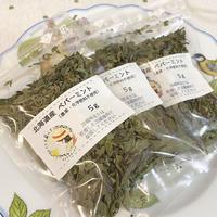 北海道産 ペパーミント(農薬不使用)  5g