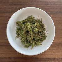 北海道産 エゾマツの新芽(農薬不使用)  5g