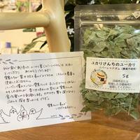 ユカリさんちのユーカリ(農薬不使用) 5g