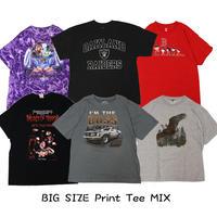 プリントTシャツアソート(極) 10P セット  ビッグサイズMIX 【USA輸入古着】