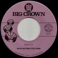 "BACAO RHYTHM & STEEL BAND / RAISE IT UP (7"")"