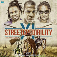BIG BLAZE WILDRES / STREET CREDIBILITY 11