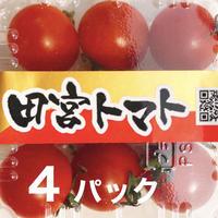 【初めての方にオススメ!】コクトマ!こくがあって味濃いめ 八ヶ岳産ミニトマト4パック