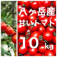 八ヶ岳(長野県) 産 ミニトマト 約10kg バラ 甘くて味が濃い 免疫力UP