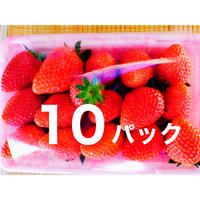 八ヶ岳(長野県)産 いちご約250g  x 10パック/箱