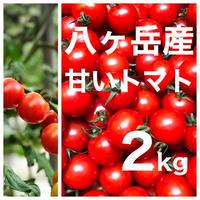 八ヶ岳(長野県) 産 ミニトマト 箱込約2kg バラ 甘くて味が濃い 免疫力UP