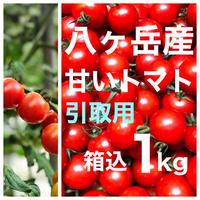 店舗引取用  八ヶ岳(長野県) 産 ミニトマト 箱込約1kg パックなし  味濃いめ