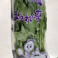 無農薬ほうれん草 100g× 50袋  えぐみがなくサラダでも利用可 茨城県産
