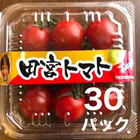 八ヶ岳(長野県) 産 ミニトマト 30パック入り1箱   甘くて味が濃い 免疫力UPに