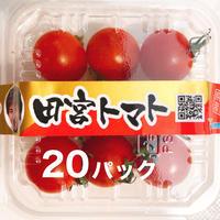 八ヶ岳(長野県) 産 ミニトマト 20パック   味濃いめ 免疫力UPに