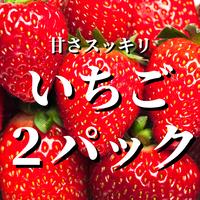 八ヶ岳産いちご2パック(約500g)
