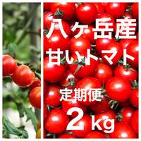 (定期便)  ミニトマト 箱込約2kg 味濃いめ トマト苦手なお子様にもお勧め  八ヶ岳(長野県産 )