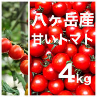 八ヶ岳(長野県) 産 ミニトマト 約4kg バラ 甘くて味が濃い 免疫力UP