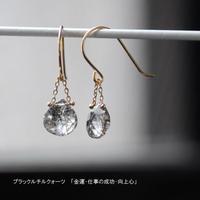 【anq.】K18/K10・マロンピアス 【誕生石・ギフト】ブラックルチルクォーツ