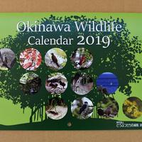 ☆NEW☆ Okinawa Wildlife Calendar 2019