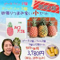【数量限定・2箱のみ・食べ比べ可】パインアップル 小1箱(3個入り・冷蔵・送料込み)