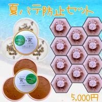 夏バテ防止‼おやつ村ひんやりお菓子セット(冷凍商品・送料込み)