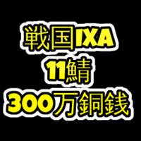 戦国ixa  11鯖  300万銅銭(一括もしくは分割対応)