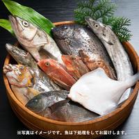 【季節のお魚定期便】普段使い魚食セット(2〜3人前)※送料無料!