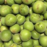 農薬・肥料不使用の青梅   (B級品) 3kg
