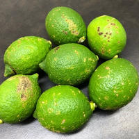 減農薬レモン  (B級品) 1kg