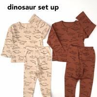 【80,90cm】dinosaur SETUP
