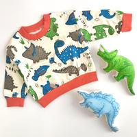 【80-110cm】funny dinosaur sweat