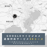Googleマイビジネス追加対応サービス30コース
