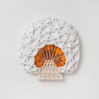 wall mushroom