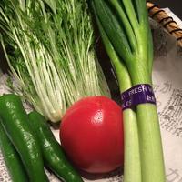 京都府産野菜基本4種